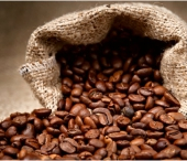 Café Produzido de Fezes